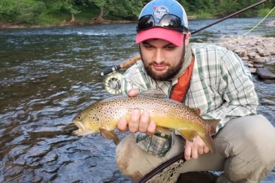 brown trout, trout fishing, Pennsylvania fishing